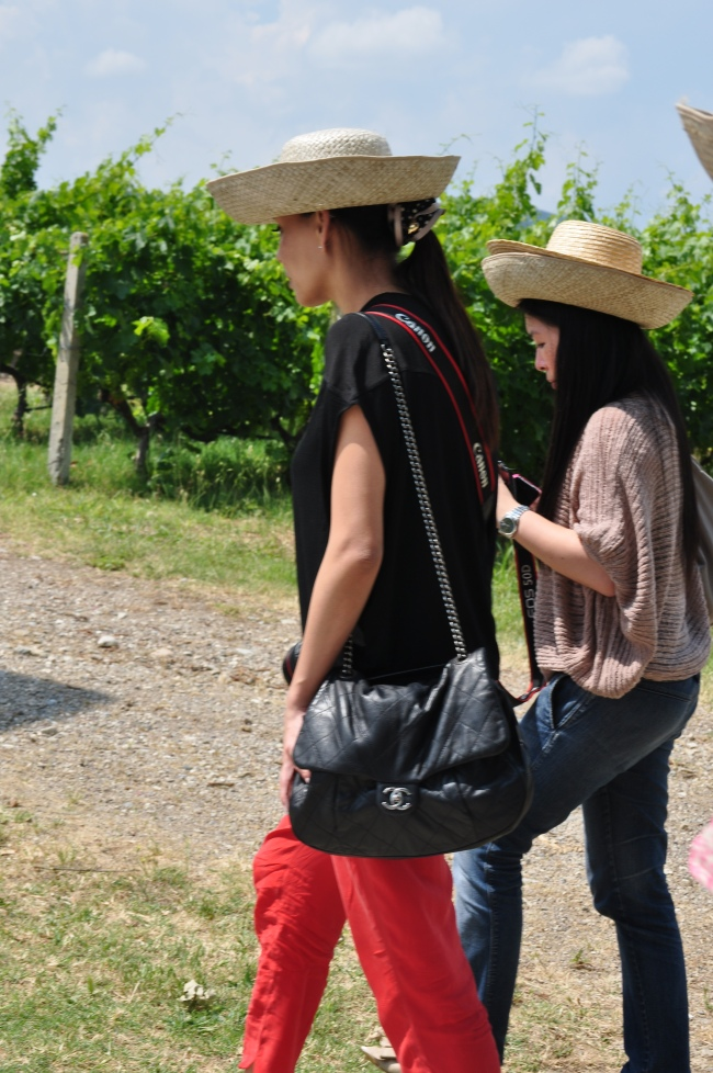Stylish Wine Tasting. Chic in a Vineyard.